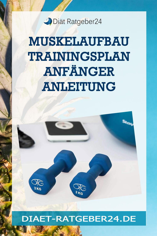 Muskelaufbau Trainingsplan Anfänger Anleitung