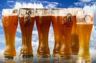 Durch Alkoholverzicht eine Gewichtsreduktion vornehmen