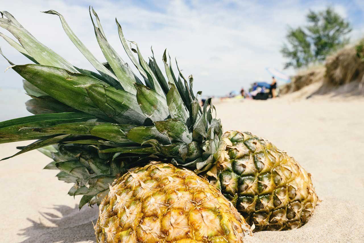 Wie hoch sind eigentlich die Ananas Kalorien?