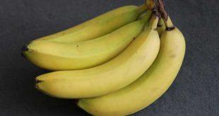 Vegan Detox auf Banana Island