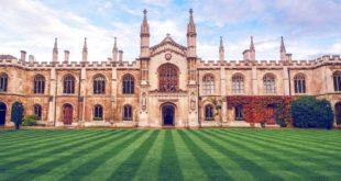 Die Cambridge-Diät - 25 Jahre Erfahrungen beim abnehmen