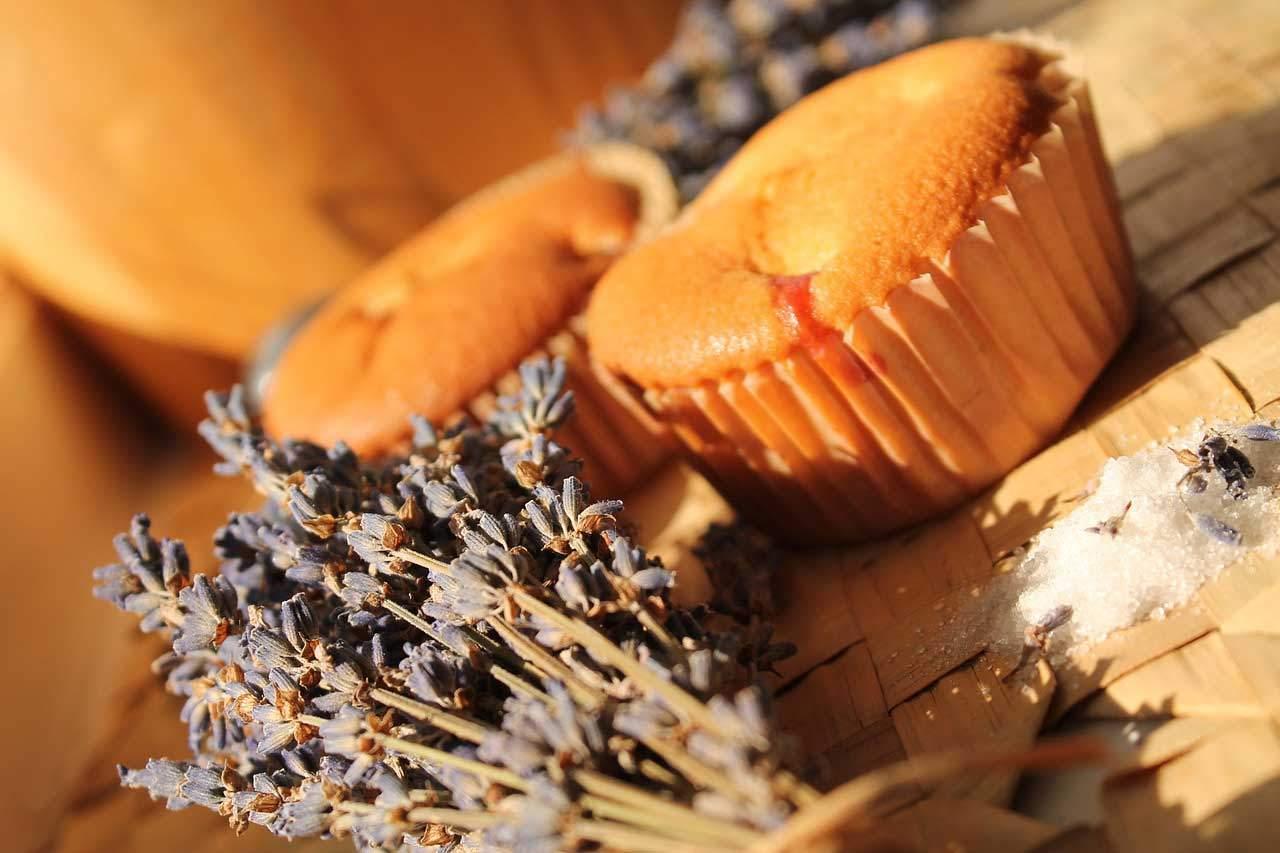 Diät Muffin Rezept ohne Zucker