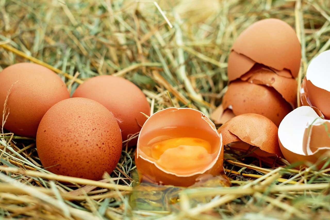 Sie galten lange als Ursache für einen erhöhten Cholesterinspiegel. Aber es ist endgültig belegt: Eier in der Diät helfen beim Abnehmen, wir sagen wie...
