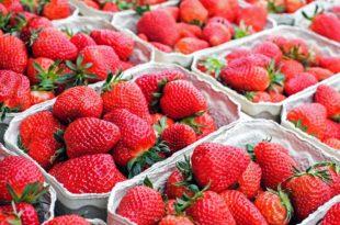 Wie viele Kalorien haben Erdbeeren?