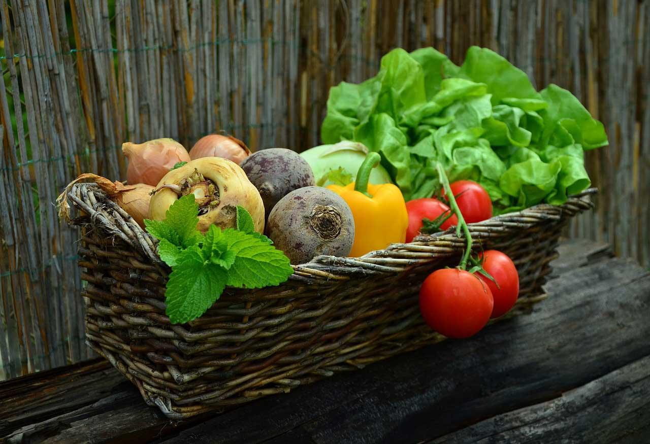 fünf Faktor Diät