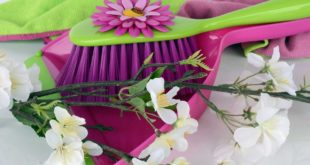 Kalorienverbrauch bei Hausarbeit und Frühjahrsputz