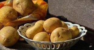 Wie viele Kalorien haben Kartoffeln?