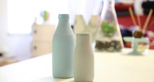Wie Milchsäurebakterien die Gesundheit unterstützen