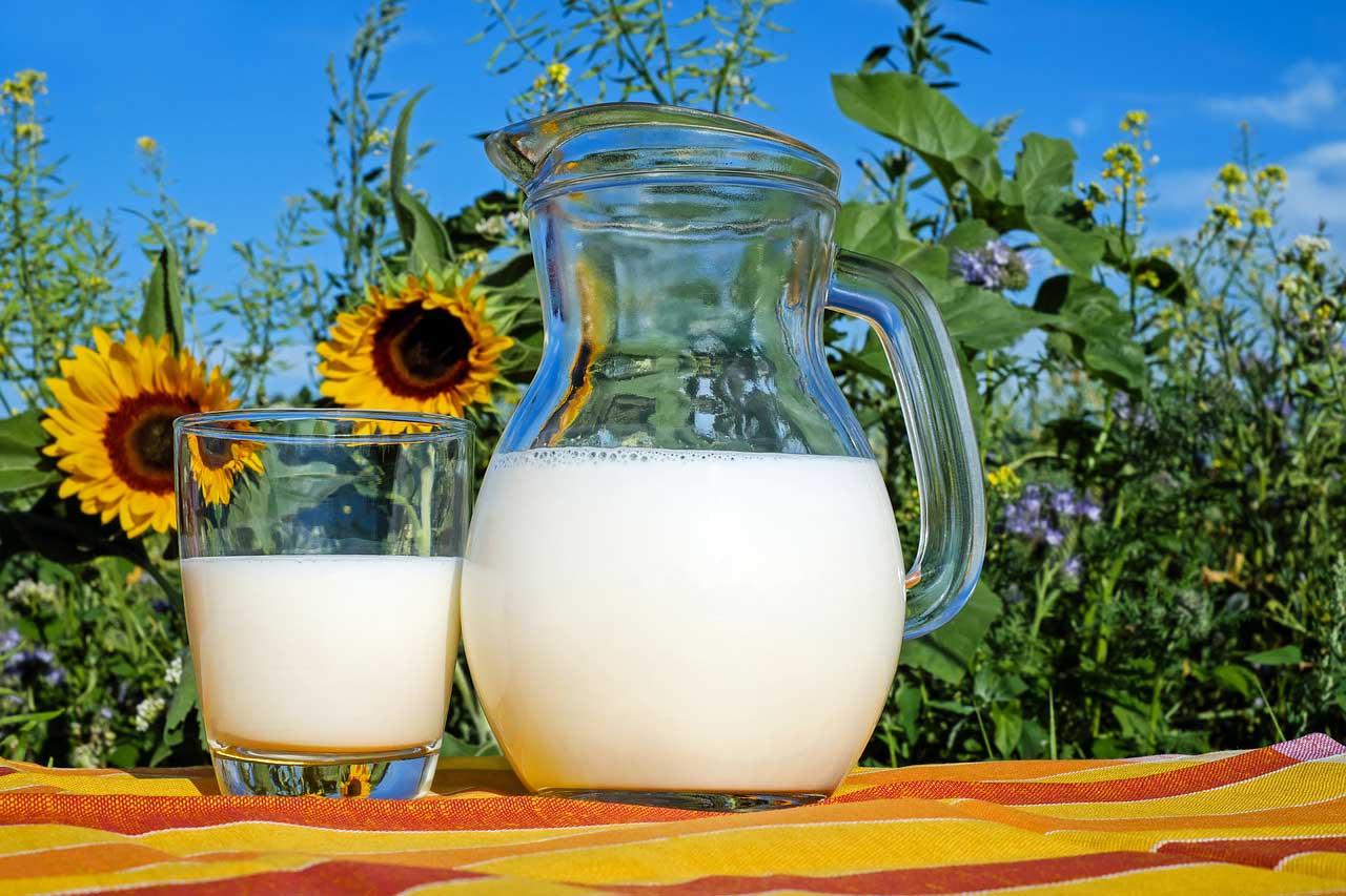 Bild von Aufgeklärt: Lässt sich mit Milch abnehmen?