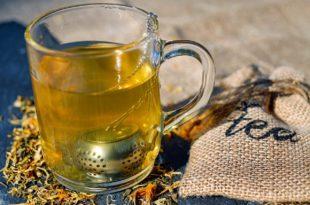 Oolong Tee zum Abnehmen