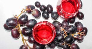 OPC Traubenkernextrakt als Treibstoff für eine Stoffwechseldiät