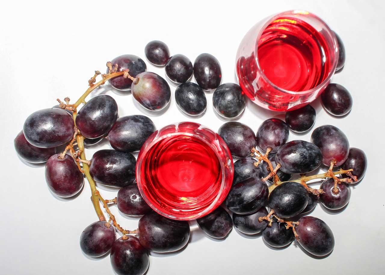 OPC Traubenkernextrakt als Nahrungsergänzungsmittel für eine Stoffwechseldiät