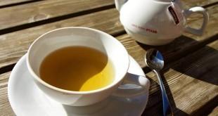 Kann man Stoffwechsel anregen mit Tee?