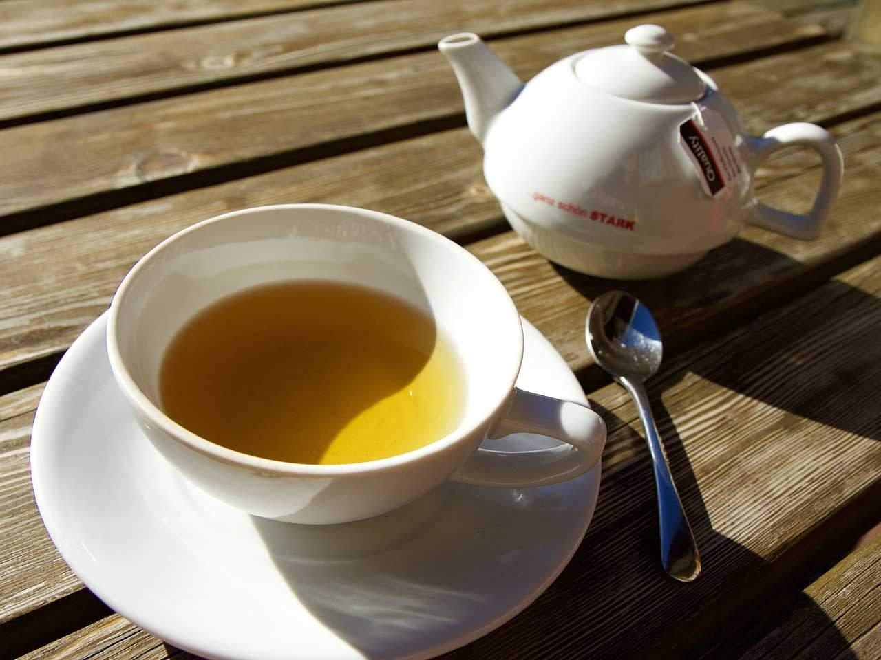 Tipp um den Stoffwechsel anzuregen - > Tee