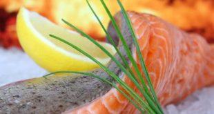 Vegetarische Alternativen zum Fleisch und Fisch