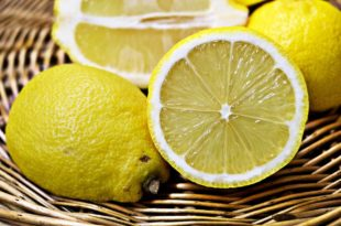 Zitronendiät - Erfahrungen beim abnehmen